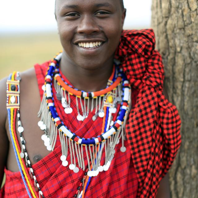 """Masai man wearing colorful traditional clothes. Portrait. Masai Mara game..."" stock image"