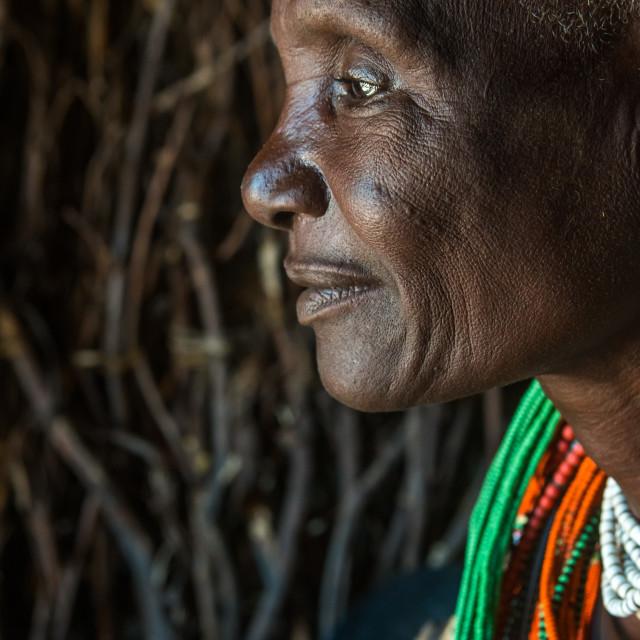 """""""Toposa tribe woman profile, Omo valley, Kangate, Ethiopia"""" stock image"""