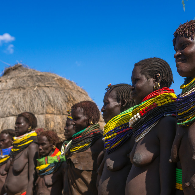 """""""Nyangatom tribe women with huge necklaces in a line, Omo valley, Kangate,..."""" stock image"""