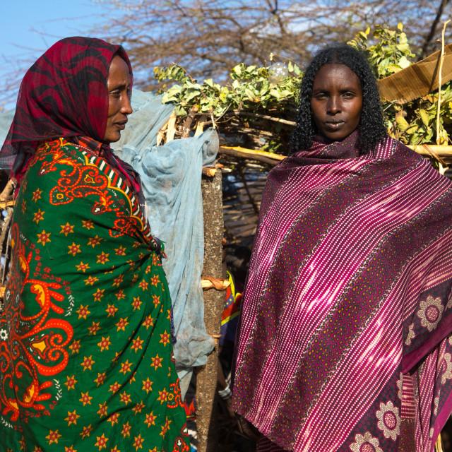 """Borana tribe women in front of a hut, Oromia, Yabelo, Ethiopia"" stock image"