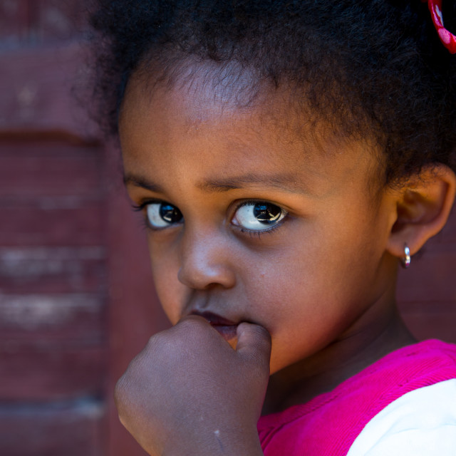 """Portrait of a cute ethiopian girl, Addis Ababa region, Addis Ababa, Ethiopia"" stock image"