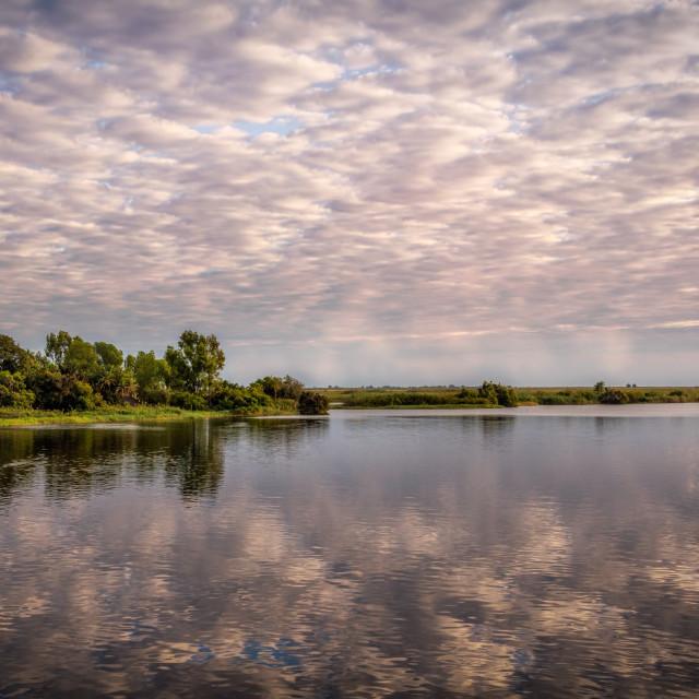 """Chobe River Skies"" stock image"