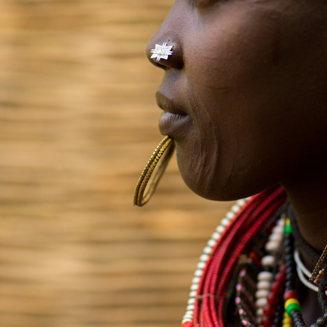 """Portrait of a sudanese toposa tribe woman refugee with huge necklaces and..."" stock image"