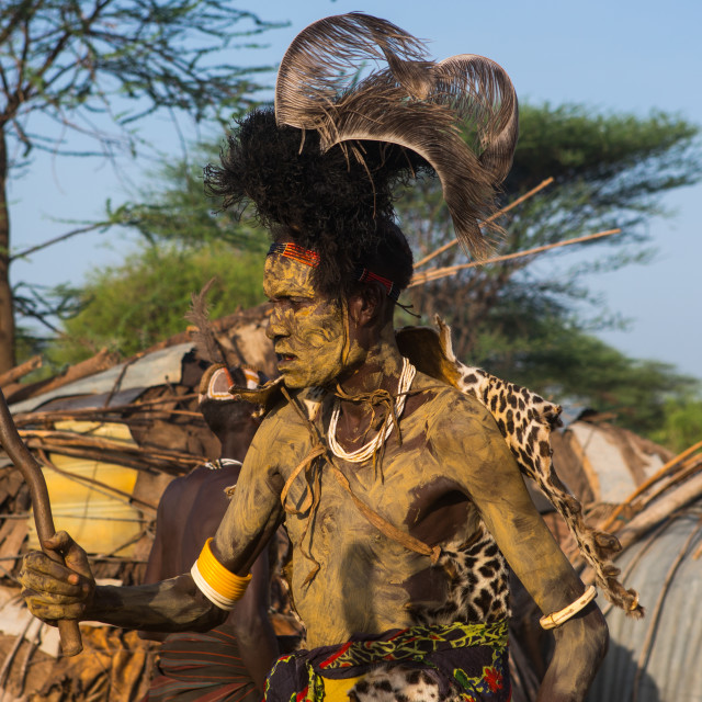 """""""Dassanech man with leopard skin and ostrich feathers headwear during dimi..."""" stock image"""