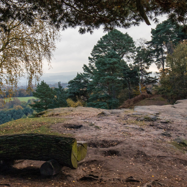 """Autumn at Alderley Edge, Cheshire"" stock image"