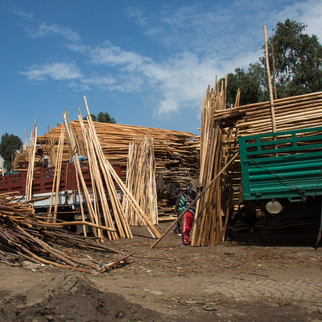 """Wood yards loaded in a truck, Addis abeba region, Addis ababa, Ethiopia"" stock image"