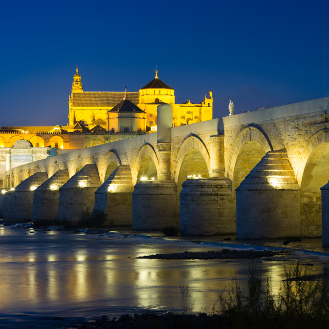 """""""Cordoba with Roman bridge and Mosque-cathedral"""" stock image"""