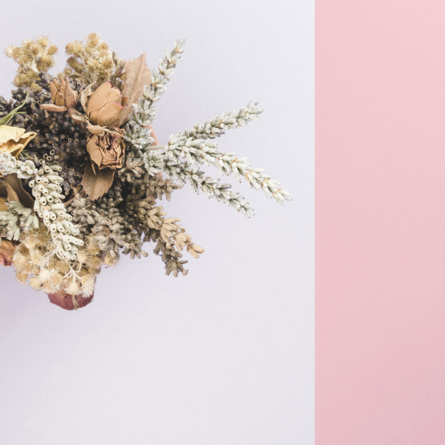 """""""floral backdrops"""" stock image"""