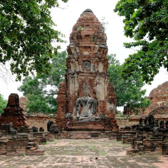 """""""Buddha Statue in Temple Ruin"""" stock image"""