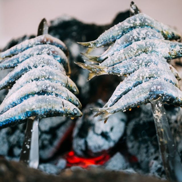 """Espetos - skewer with sardines in a fire. Spanish cuisine"" stock image"