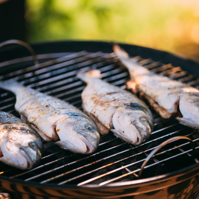 """Fish fried on the grill outdoor"" stock image"