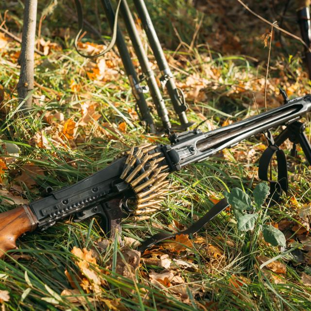 """German military ammunition - machine gun of World War II in grass"" stock image"