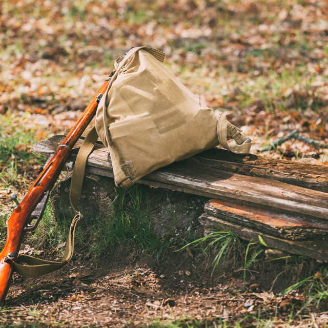 """""""Soviet Russian Rifle Of World War II In Forest"""" stock image"""