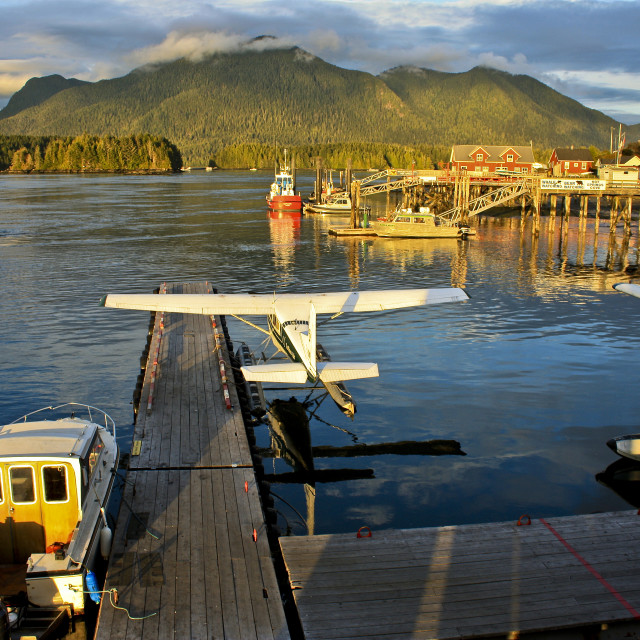 """Evening light, Tofino Harbour - Vancouver Island"" stock image"