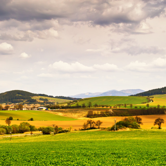 """Spring green field and meadows on the hills panorama"" stock image"