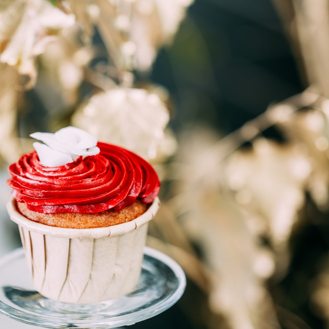 """Dessert Sweet Tasty Cupcake In Candy Bar On Table. Delicious Sweet Buffet...."" stock image"