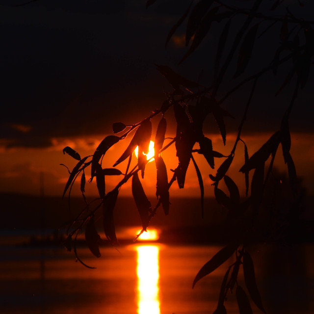 """Balaton lake sunset"" stock image"