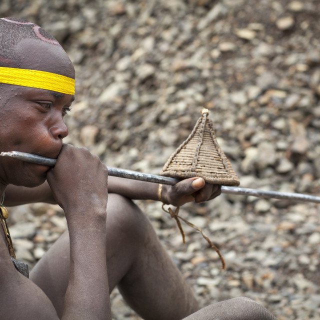 """Bodi Tribe Blowing In A Local Trumpet For Kael Ceremony, Hana Mursi, Omo..."" stock image"