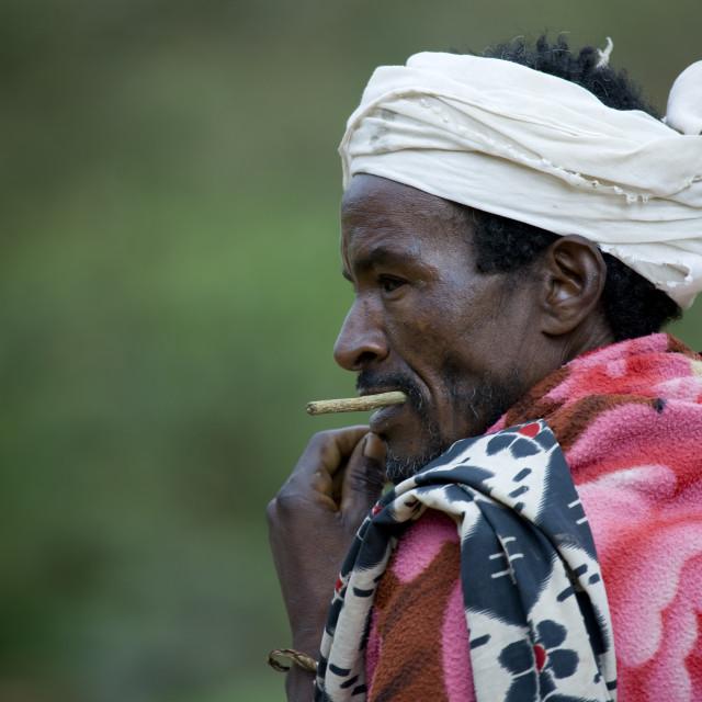 """Portrait Of A Borana Tribe Man Chewing A Stick, Yabello, Omo Valley, Ethiopia"" stock image"