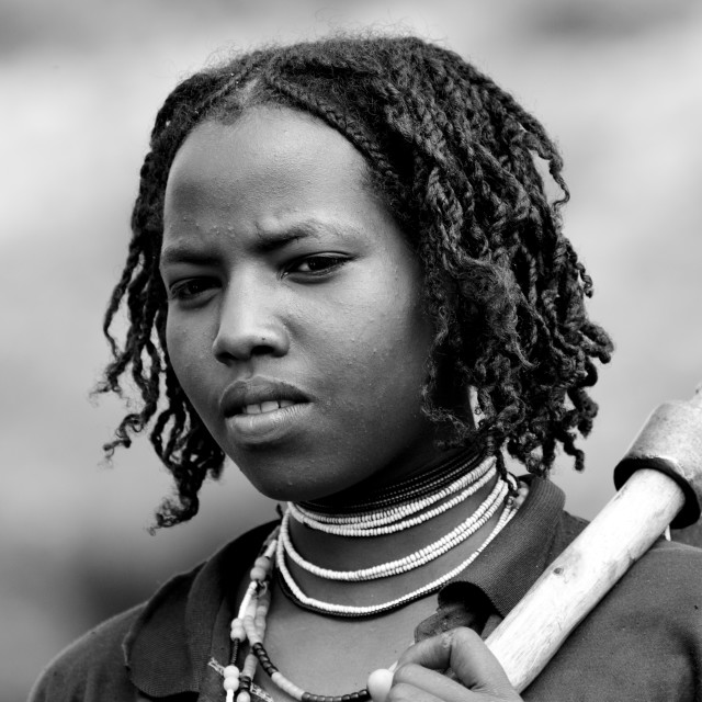 """Black And White Portrait Of A Young Borana Tribe Lumberjack Woman Carrying An..."" stock image"