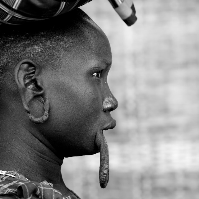 """""""Mursi Woman With Extended Inferior Lip And Ear Lobes Carrying A Load On Her..."""" stock image"""
