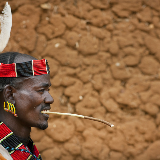 """""""Traditionally Dressed Hamer Man With Feather Chewing Siwak Stick Omo Valley..."""" stock image"""