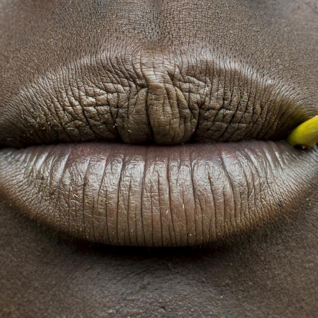 """""""Suri Tribe Woman Lips Holding A Stick, Kibish, Omo Valley, Ethiopia"""" stock image"""