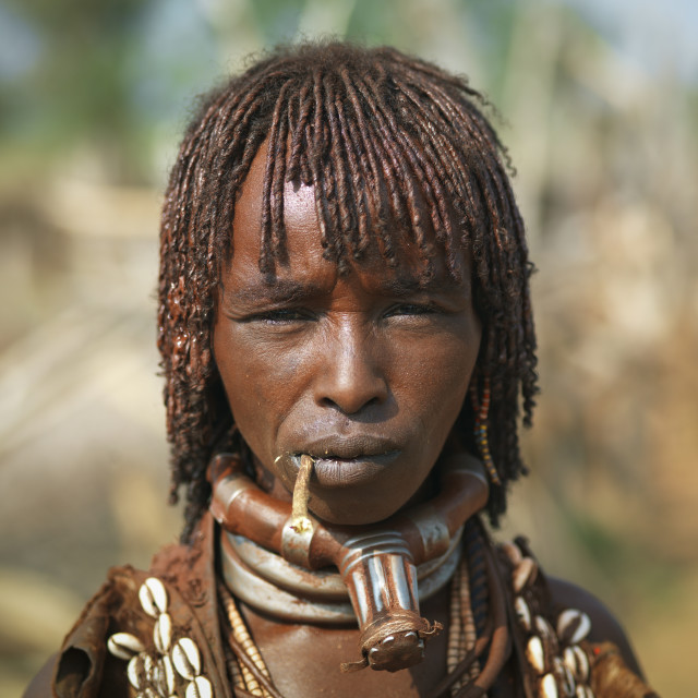 """""""Hamer Woman With Braided Dyed Hair Chewing Siwak Portrait Ethiopia"""" stock image"""