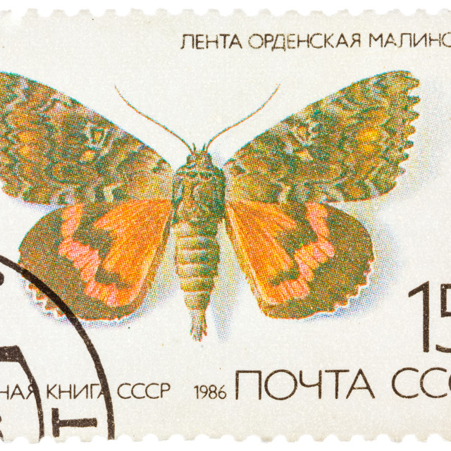 """Stamp printed in the USSR (Russia) shows a Butterfly with the inscription..."" stock image"