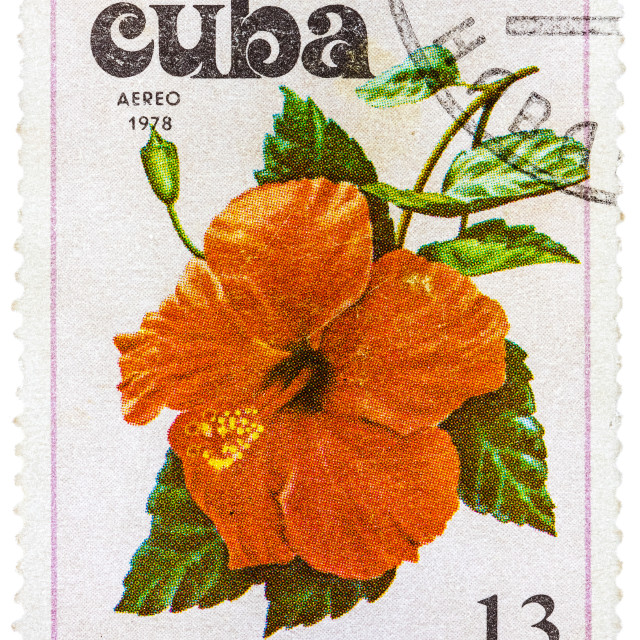 """""""Postage Stamp Shows Flowers of the Pacific Ocean"""" stock image"""