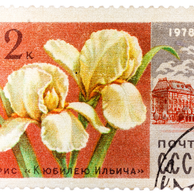 """""""Stamp printed in USSR (CCCP, soviet union) shows image of Ilich anniversary..."""" stock image"""