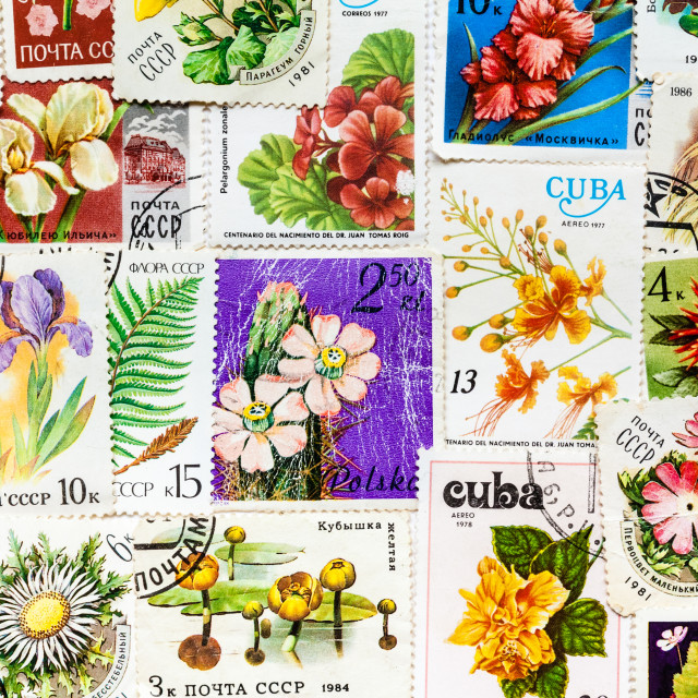 """Stamp printed in USSR shows flower"" stock image"