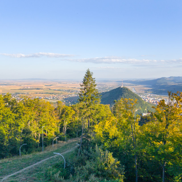 """""""Forest and the city in valley"""" stock image"""
