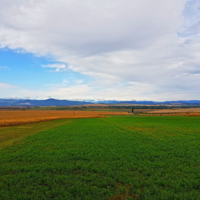 """""""Fields and the mountains as background"""" stock image"""