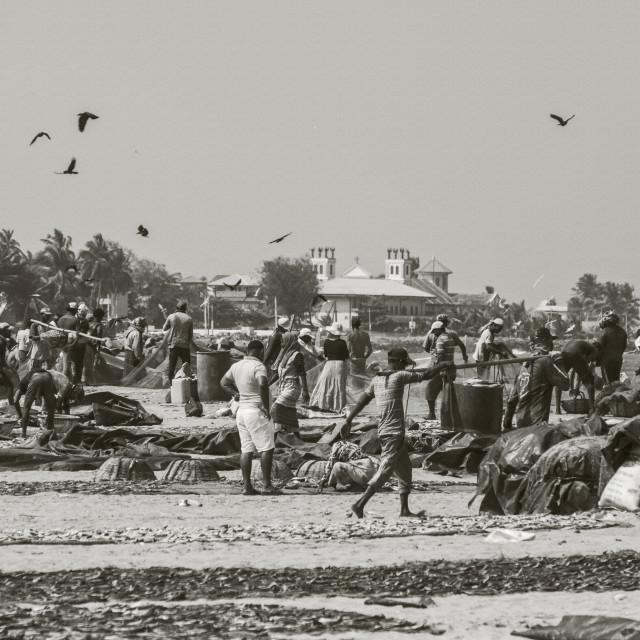 """""""Fisherman's Village in Negombo"""" stock image"""