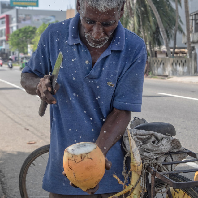 """Preparing Coconut"" stock image"