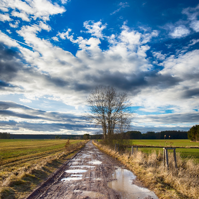 """Dirty road with many puddles in sunny autumn day"" stock image"