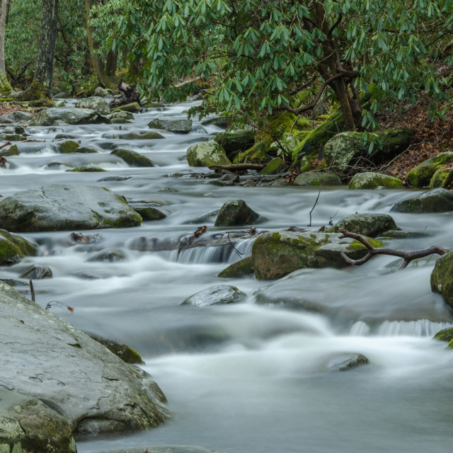 """Mountain Stream Long Exposure"" stock image"