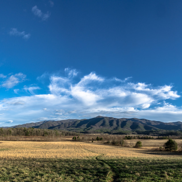 """Cades Cove Panorama"" stock image"
