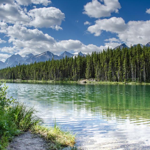 """Herbert Lake, Banff National Park"" stock image"