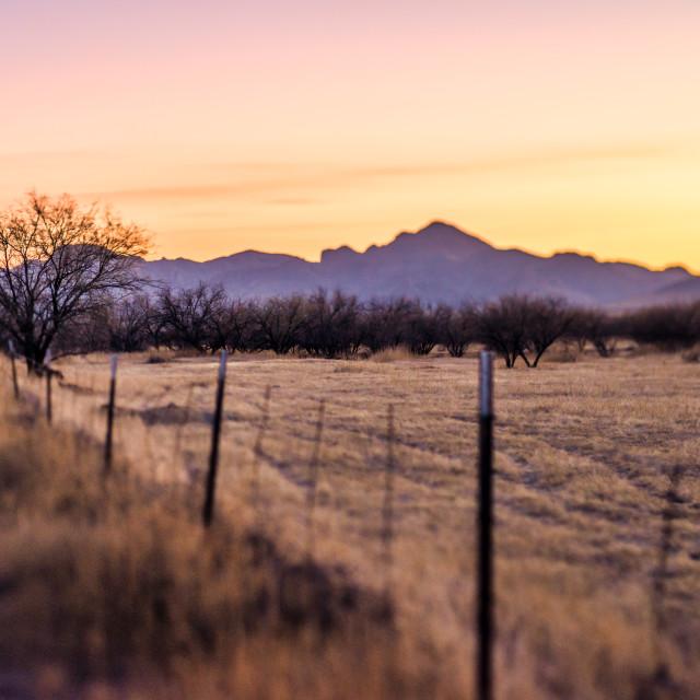 """""""Fence Arizona sunset landscape"""" stock image"""