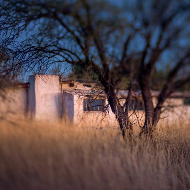 """""""Creepy old abandoned house"""" stock image"""