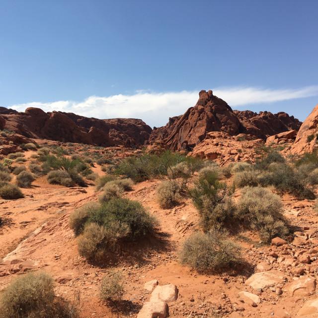 """""""Desert Landscape 2"""" stock image"""