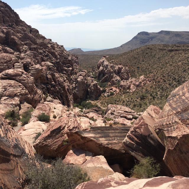 """""""Desert Landscape 1"""" stock image"""
