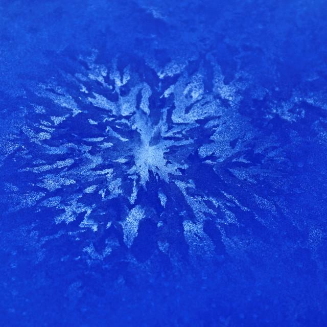 """Blue Ice Flower"" stock image"