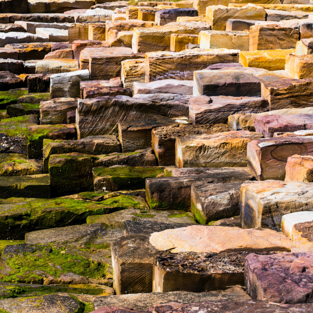 """These Stepping Stones"" stock image"