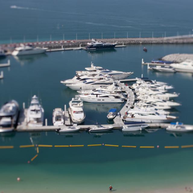 """Jumeirah Yacht Club, Dubai"" stock image"