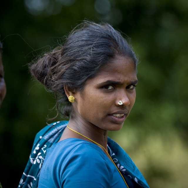 """Midadult Women Starring At The Camera, Pondicherry, India"" stock image"