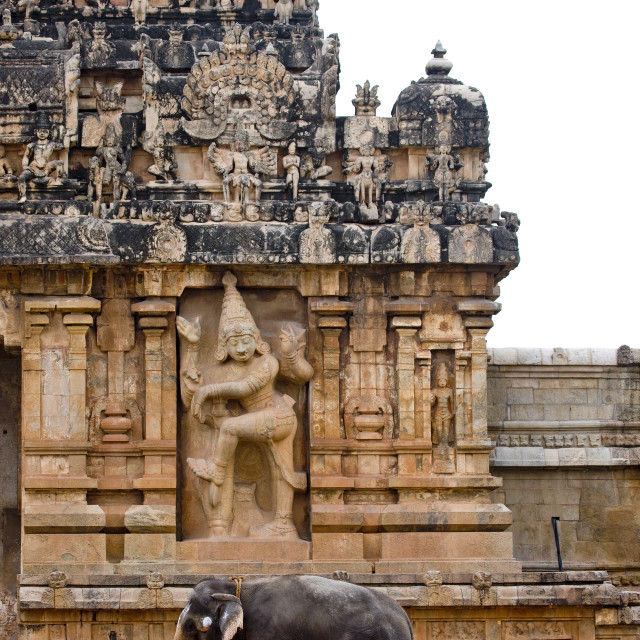 """""""Elephant With Paint On Its Forehead In Front Of Dancing Shiva Rock Cut Relief..."""" stock image"""