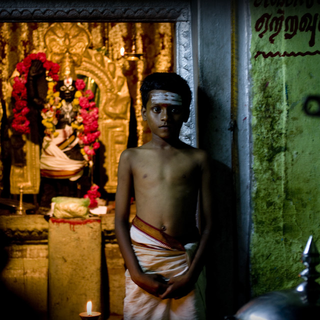 """Young Boy With Painted Forehead Posing In Sri Ranganathaswamy Temple Trichy,..."" stock image"
